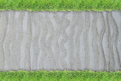 Green grass border on cement wall background Stock Photography