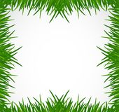 Green grass border illustration design Royalty Free Stock Image