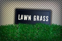 Green Grass Border, Isolated on Transparent Background, Lawn abstract nature texture. Symbol natural, fresh, meadow plant, spring. Green Grass Border, Isolated royalty free stock photography