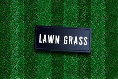 Green Grass Border, Isolated on Transparent Background, Lawn abstract nature texture. Symbol natural, fresh, meadow plant, spring. Green Grass Border, Isolated royalty free stock photos