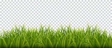 Green grass border. Realistic background. Vector stock illustration