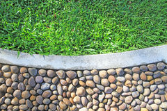 Green grass border on stone floor background Stock Image