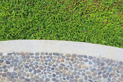 Green grass border on stone floor background Stock Photo