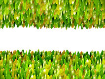 Green grass border. Green grass for text frame Stock Photography