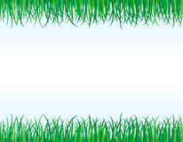 Green grass borders Royalty Free Stock Image