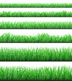 Green grass borders set isolated on white background Royalty Free Stock Photos