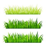 Green grass borders set isolated on white background vector.  Royalty Free Stock Photos