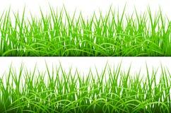 Green Grass Borders Set, Vector Illustration. 2 Backgrounds Of Green Grass,  On White Background, Vector Illustration art Royalty Free Stock Image