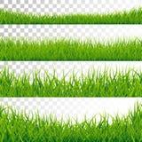 Green Grass Borders Set Vector Illustration on Transparent Background. Green Grass Borders Set Vector Illustration on Transparent Background Royalty Free Stock Photos