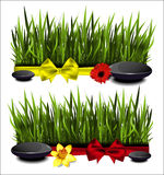 Green grass with a bow Stock Photography