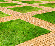 Green grass and brick paths Stock Photo