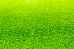 Green grass bright vivid field empty space royalty free stock images