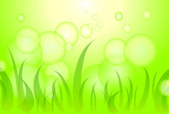 A green grass and bubbles are a background. Royalty Free Stock Images