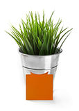 Green grass in bucket with blank greeting card Stock Images