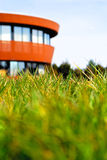 Green grass with building on a background Stock Photography