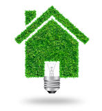 Green grass bulb as symbol of home icon and nature protection, i Royalty Free Stock Images