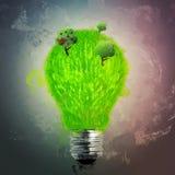 Green grass bulb Stock Image