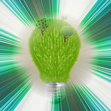 Green grass bulb Stock Photography
