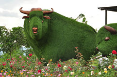 Green grass bull statue. Bull statue made of green grass in flower field royalty free stock photos