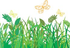 Green grass with butterflies Royalty Free Stock Photos