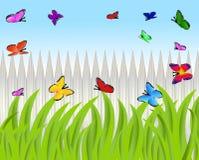 Green grass and butterflies Stock Image