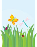 Green grass with butterfly, dragon-fly, beetle and Stock Images