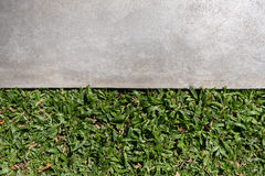 Green grass and cement ground. Fresh green grass and cement ground Royalty Free Stock Photos