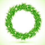 Green grass with chamomiles round frame Royalty Free Stock Photos