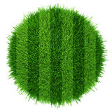 Green grass circle field background. Realistic textured.  Royalty Free Stock Photos