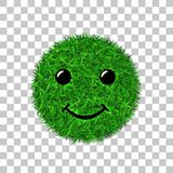 Green grass circle field 3D. Face smile. Smiley grassy icon, isolated white transparent background. Ecology concept. Smiling sign. Symbol eco, nature, safe Stock Photo