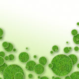 Green grass circles background Stock Image