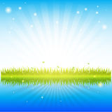 Green grass with clean water Royalty Free Stock Photo