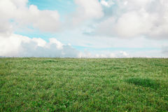 Green grass with clouds, field. Field with green grass and clouds Stock Image