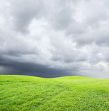 Green grass on cloudy sky Stock Photo