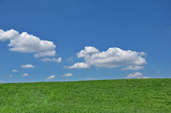 Green grass and cloudy sky Stock Photos