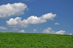 Green grass and cloudy sky Royalty Free Stock Images