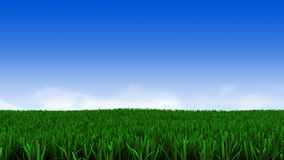 Green grass and cloudy sky. 3d illustration of green grass on field and cloudy sky on background Royalty Free Stock Photography