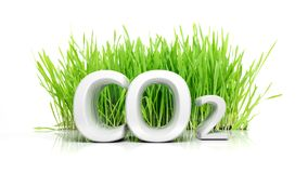 Green grass with CO2. 3D text ecological concept isolated vector illustration