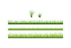 Green grass collection. Vector. 3 backgrounds of green grass and 2 tufts of grass Stock Image