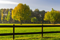 Green grass and colorful trees surrounded by a wooden fence on a golf course at sunny morning in Belgrade. Serbia Royalty Free Stock Photo