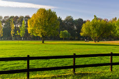 Green grass and colorful trees surrounded by a wooden fence on a golf course at sunny morning in Belgrade. Serbia Royalty Free Stock Image