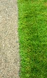 Green grass and concrete floor Royalty Free Stock Photography