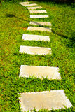 Green grass with concrete walkway Stock Photography