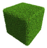 Green grass cube isolated on white background Stock Images