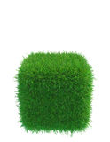 Green grass cube on white background Stock Photo