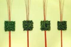 Green grass decor Stock Photos