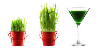 Green grass in decorative pot and bio cocktail isolated on white Stock Photos