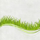 Green grass design Stock Images