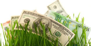 Green grass with the dollar and euro isolated Royalty Free Stock Photography