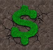Green grass in dollar sign shape on soil background. Green grass in dollar sign shape on dry soil with cracks background, ECO and circular economy concept Stock Photography